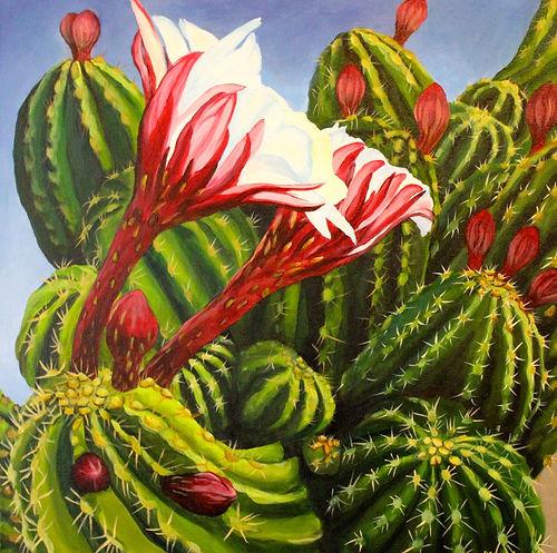 32_Levitt_A Cactus.jpg