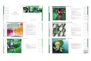 Brochure Design - Avesthagen