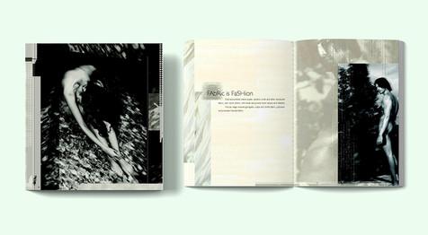 Brochure Design - Royal Exports