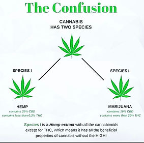 confusion about thc