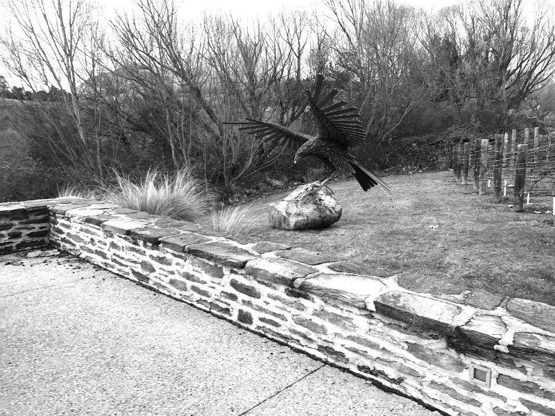 Dan Kelly Sculpture - NZ EAGLE Installation