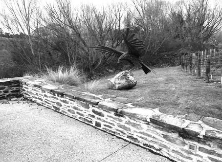 NZ EAGLE Installation