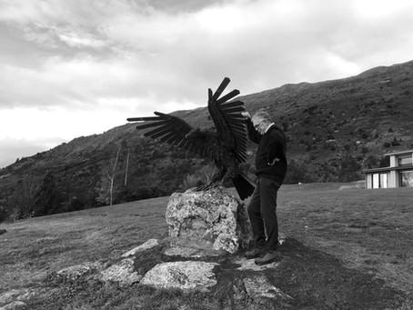 Eagle 10 Wanaka