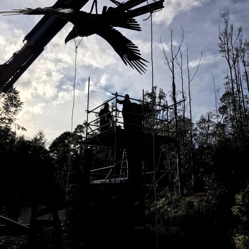 Dan Kelly Sculpture - Global unique Soaring Haast Eagle