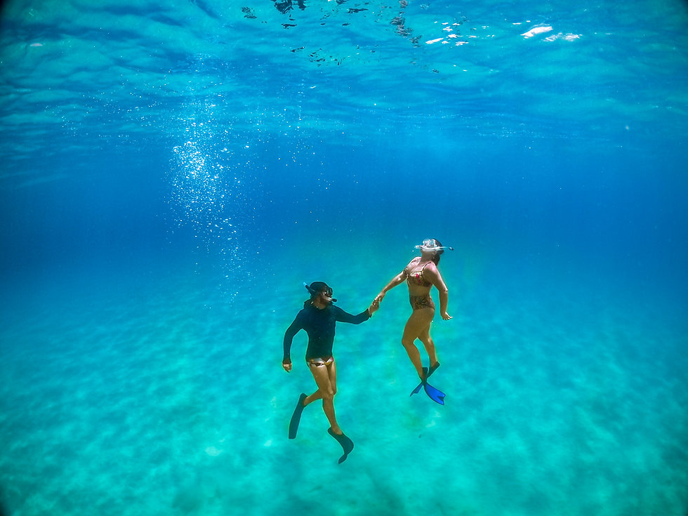 Fotografia subaquatica em Noronha