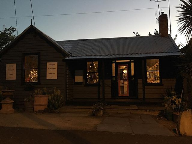 #macandmorgan #castlemaine #littlegreyhouse  #twilight #twinkle #christmas