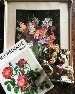 Roses and Gladioli in books and pictures