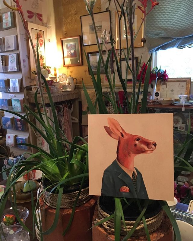 Mr kangaroo just hopped into the new table centre _macandmorgan!!! Visit him and other fab cards thi