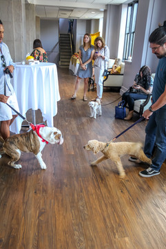 Doggy Event-52.jpg