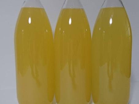 りんごジュースの販売を試験的に開始いたします。