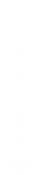 logo long white.PNG