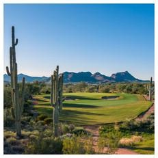 We-Ko-Pa Golf Club, AZ (Saguaro Course)