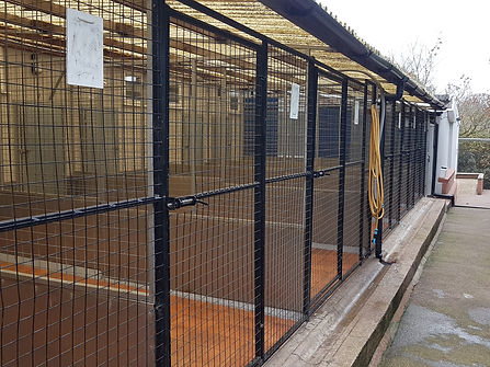 large kennel1.jpg