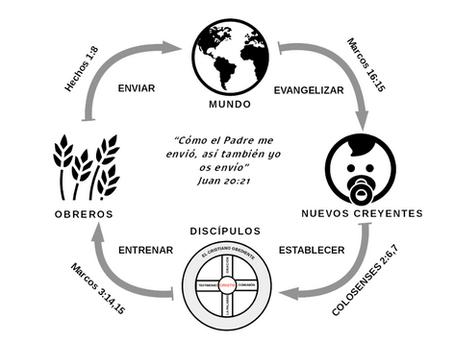 Qué es el proceso del Discipulado?