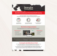 Flyer for Intuit