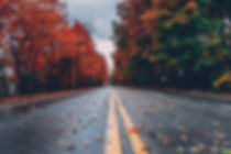 Fall Road.jpeg