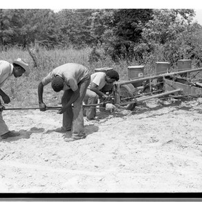 Amistad Awarded NEH Grant to Organize Collections on Black Agriculture, Cooperatives and Land Owners
