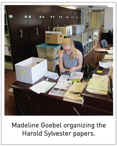 Madeline Goebel organizing the Harold Sylvester papers.