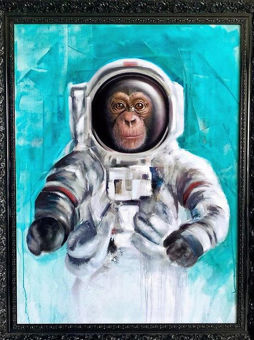 Enos Astro Chimp