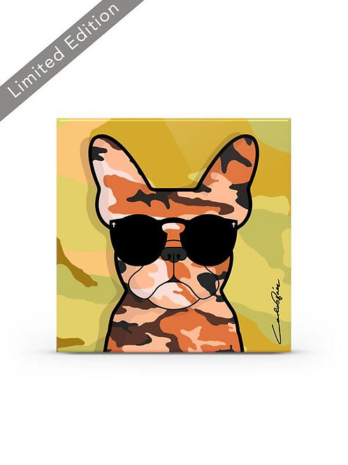 Camo Frenchie - Yellow