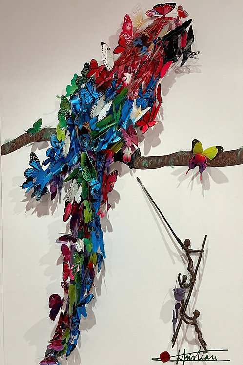 Butterfly Parrot