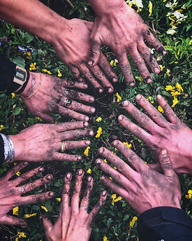 dirt covered garden hands growing together