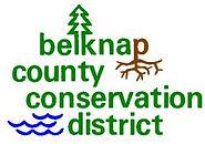BCCD Logo.jpg
