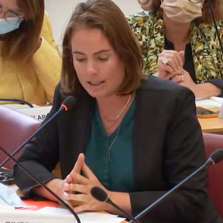 """""""En Afghanishtan, la France a agi avec efficacité"""" intervention en CAE"""