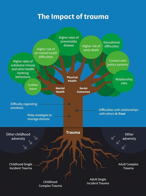 Trauma Tree, Impact of Trauma, Trama informed care
