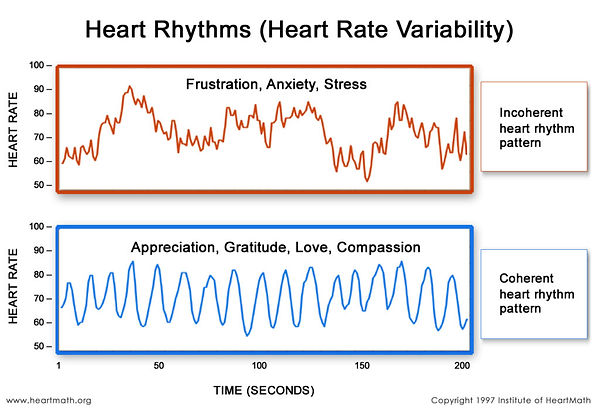 Heart Rhythm, Coherence, emotions and HRV,HRV plot, Para Wellbeing