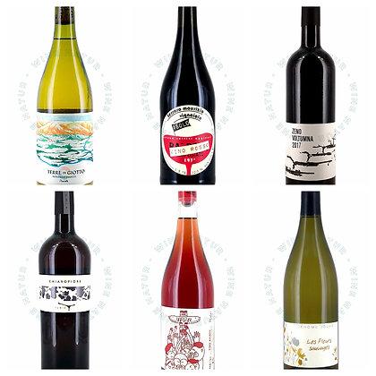 6 Bottles Treasure Box - Intro to natural wines world