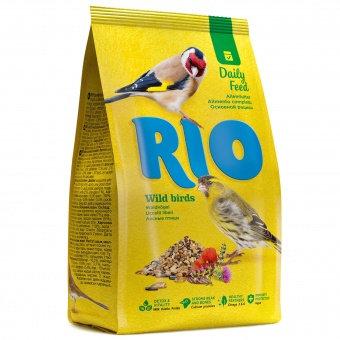 RIO для лесных певчих птиц