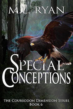 Special Conceptions 600x900.jpg