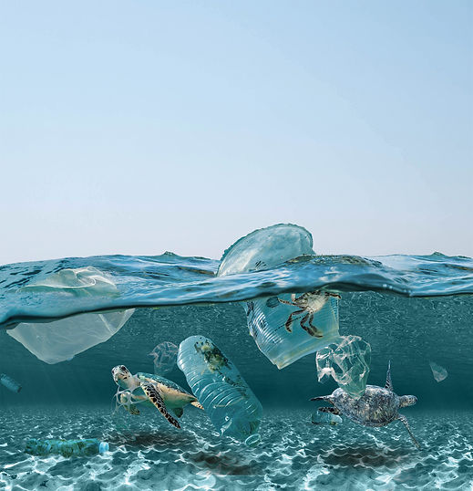 Vervuilde-zee.jpg