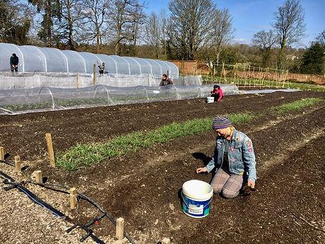 Volunteers in the garden .jpg