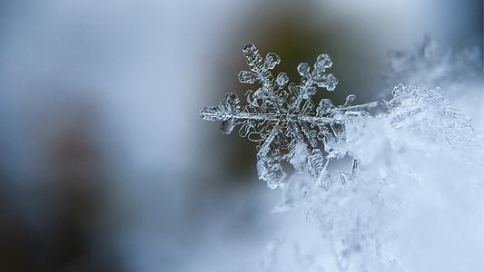 Winter Retreat.png