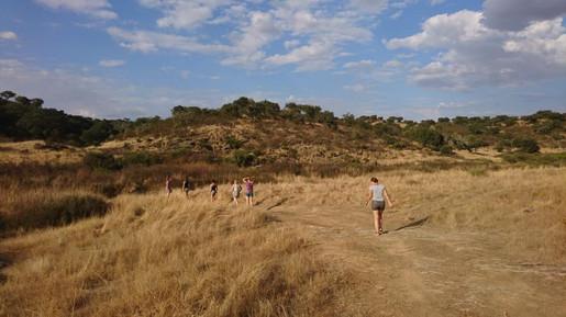 Wandern durch die Natur