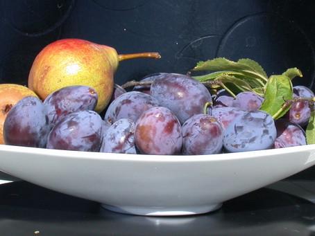 Fruitlessness