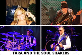 TARA AND THE SOUL SHAKERS COLLAGE.JPG