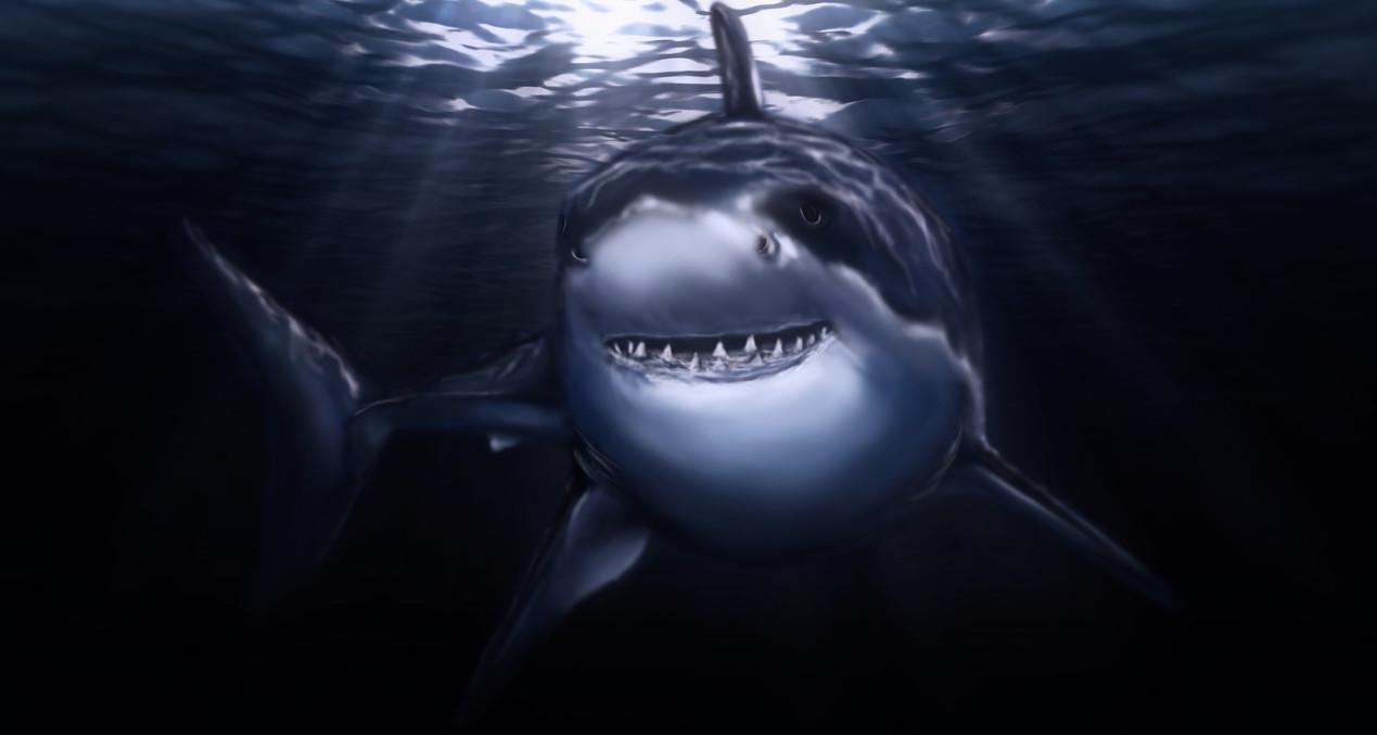big Shark.jpg