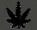 Solid_Leaf-512.png