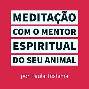 meditação_com_o_mentor_espiritual_do
