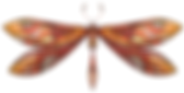 GoftOfGraceLogo_dragonfly.png