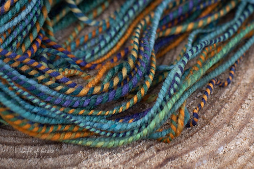 """Worsted Weight Targhee """"Curiosity Voyage"""""""
