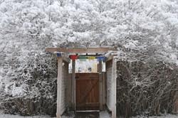 snow covered arbor 12-2015