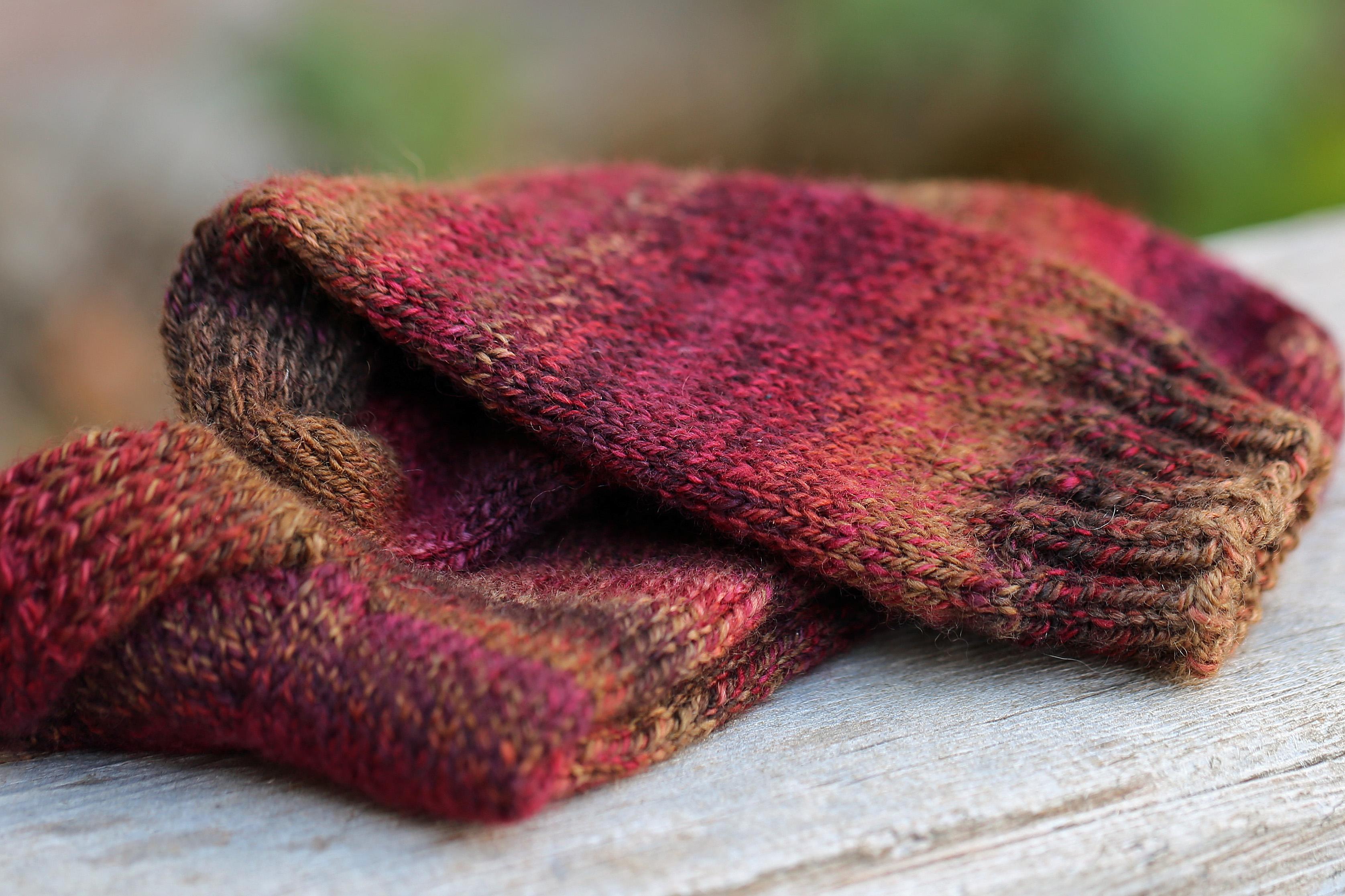 Shoshin Socks