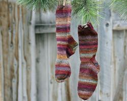 Road Trip Socks