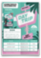 DayTrip-Sales Sheet-Mockup.png