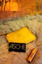 Ladies of Paradise x Asche
