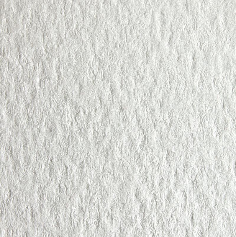 Tintoretto Gesso Paper